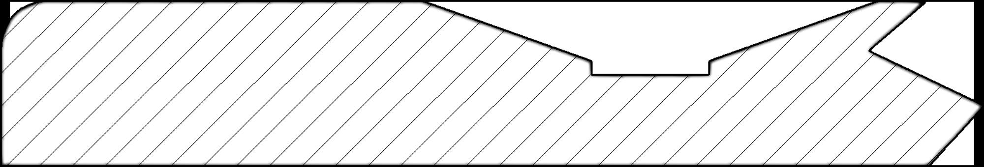 Model arena - sectiune